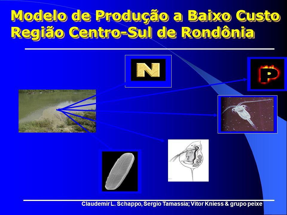 MATRIZ DE PRODUÇÃO DE PEIXE A BAIXO CUSTO 100020003000 40005000 Kg 0 75% 50% 25% 100% Alimentos Naturais Farelos Proteinados Rações Balanceadas Tacon
