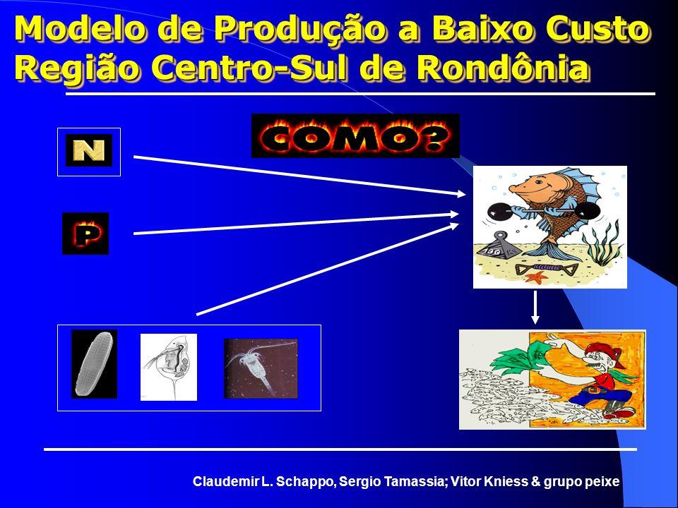 Modelo de Produção a Baixo Custo Região Centro-Sul de Rondônia Claudemir L. Schappo, Sergio Tamassia; Vitor Kniess & grupo peixe