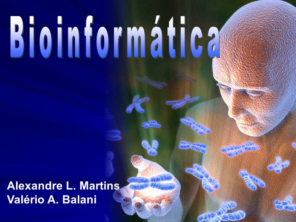 Alexandre L. Martins Valério A. Balani