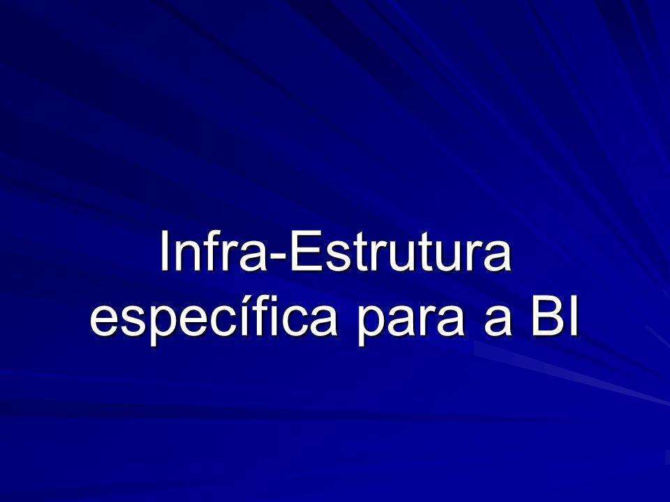 Infra-Estrutura específica para a BI