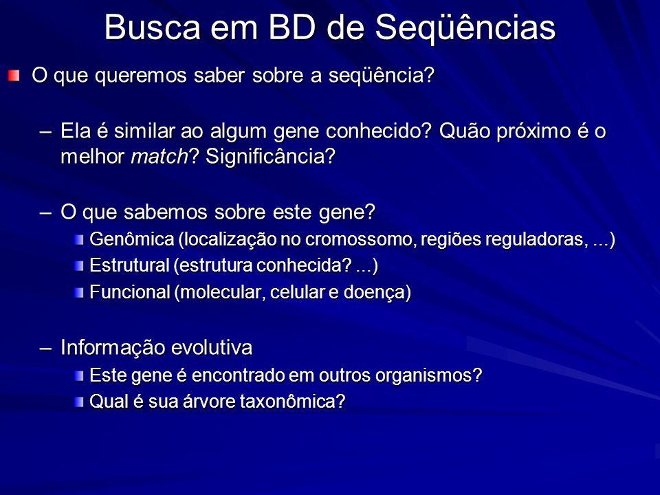 Busca em BD de Seqüências O que queremos saber sobre a seqüência? –Ela é similar ao algum gene conhecido? Quão próximo é o melhor match? Significância