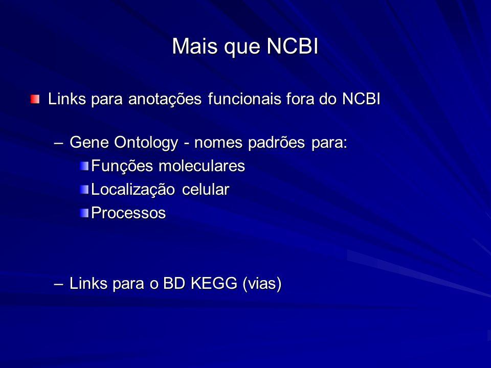 Mais que NCBI Links para anotações funcionais fora do NCBI –Gene Ontology - nomes padrões para: Funções moleculares Localização celular Processos –Lin