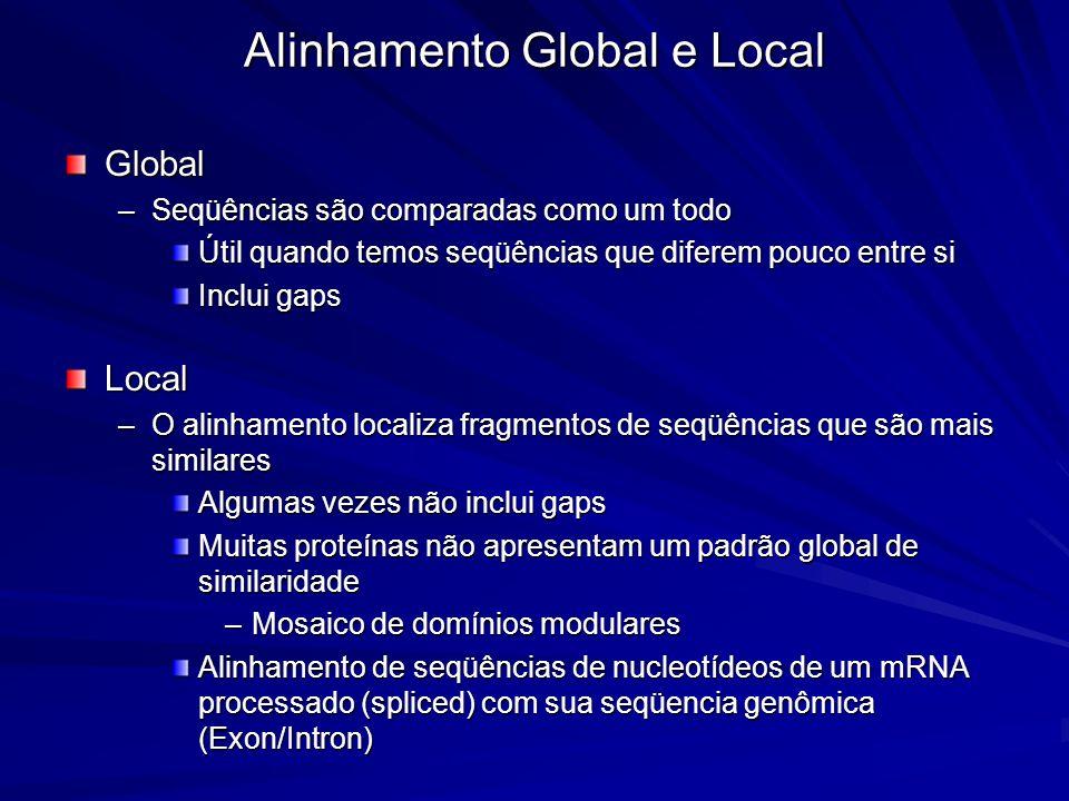 Global –Seqüências são comparadas como um todo Útil quando temos seqüências que diferem pouco entre si Inclui gaps Local –O alinhamento localiza fragm