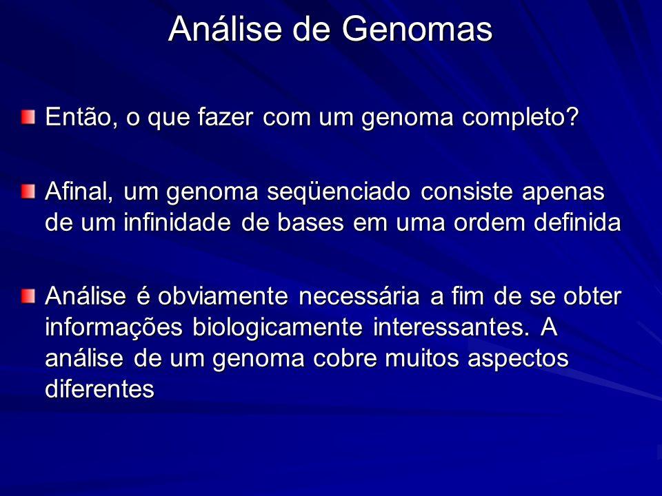 Análise de Genomas Então, o que fazer com um genoma completo? Afinal, um genoma seqüenciado consiste apenas de um infinidade de bases em uma ordem def
