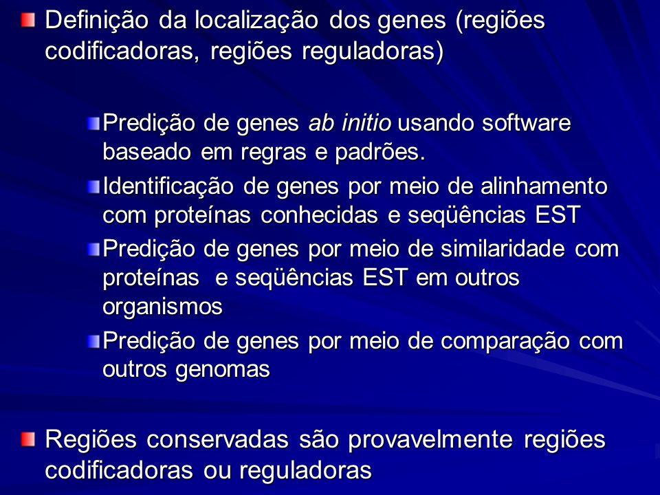 Definição da localização dos genes (regiões codificadoras, regiões reguladoras) Predição de genes ab initio usando software baseado em regras e padrõe