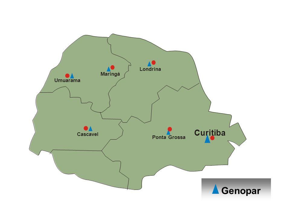 Maria Aparecida Fernandez- DBC - UEM Curitiba Londrina Maringá Umuarama Cascavel Ponta Grossa Genopar