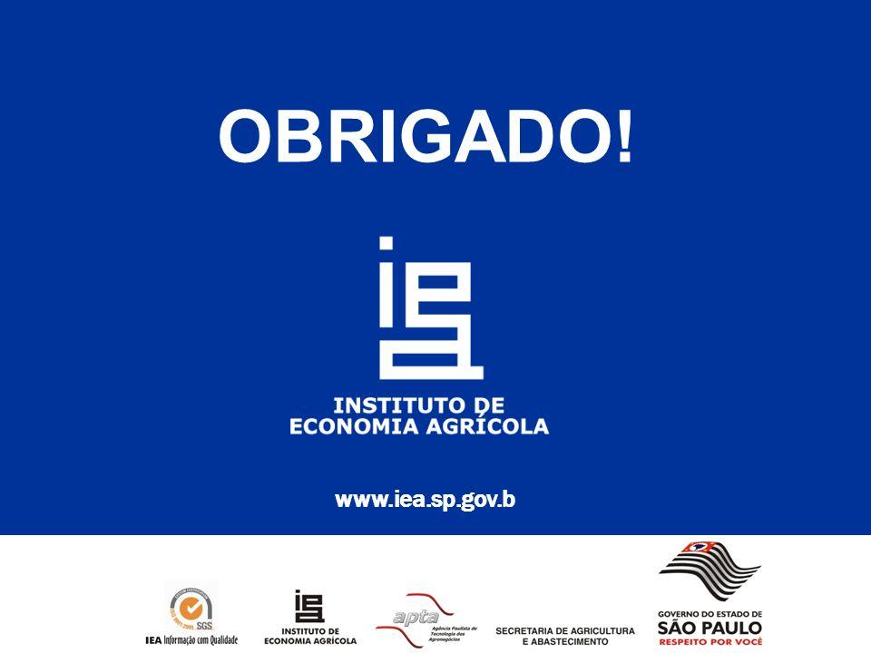 www.iea.sp.gov.b OBRIGADO!