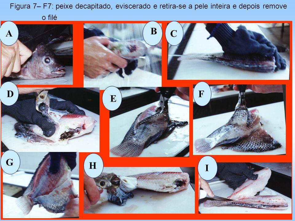 A B C D E F G H I Figura 7– F7: peixe decapitado, eviscerado e retira-se a pele inteira e depois remove o filé