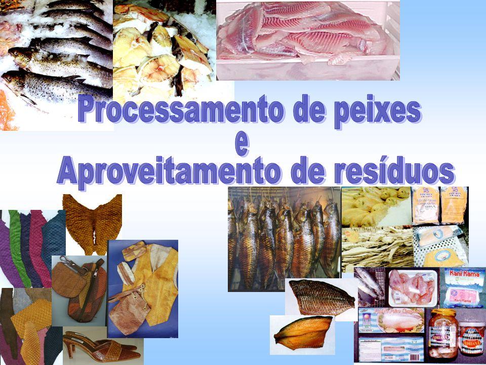 Tecnologia de produção Produto ao consumidor Tecnologia do processamento de pescado