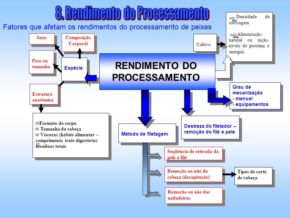 Fatores que afetam os rendimentos do processamento de peixes RENDIMENTO DO PROCESSAMENTO Espécie Peso ou tamanho Estrutura anatômica Formato do corpo