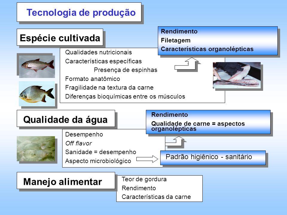 Teor de gordura Rendimento Características da carne Tecnologia de produção Espécie cultivada Qualidade da água Manejo alimentar Desempenho Off flavor