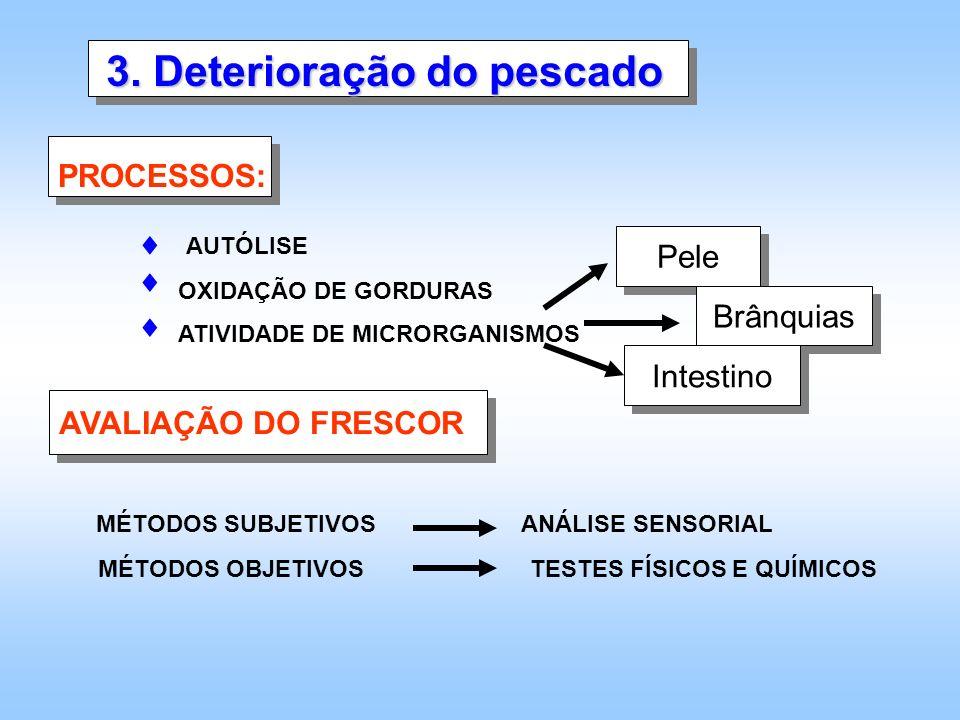3. Deterioração do pescado PROCESSOS: AUTÓLISE OXIDAÇÃO DE GORDURAS ATIVIDADE DE MICRORGANISMOS Pele Brânquias Intestino AVALIAÇÃO DO FRESCOR MÉTODOS