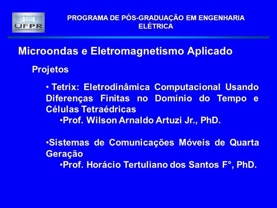 PROGRAMA DE PÓS-GRADUAÇÃO EM ENGENHARIA ELÉTRICA Microondas e Eletromagnetismo Aplicado Projetos Tetrix: Eletrodinâmica Computacional Usando Diferença