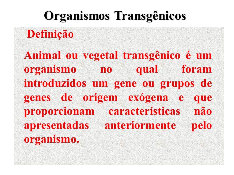 Definição Animal ou vegetal transgênico é um organismo no qual foram introduzidos um gene ou grupos de genes de origem exógena e que proporcionam cara