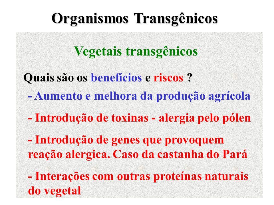 Organismos Transgênicos Vegetais transgênicos Quais são os benefícios e riscos ? - Aumento e melhora da produção agrícola - Introdução de toxinas - al