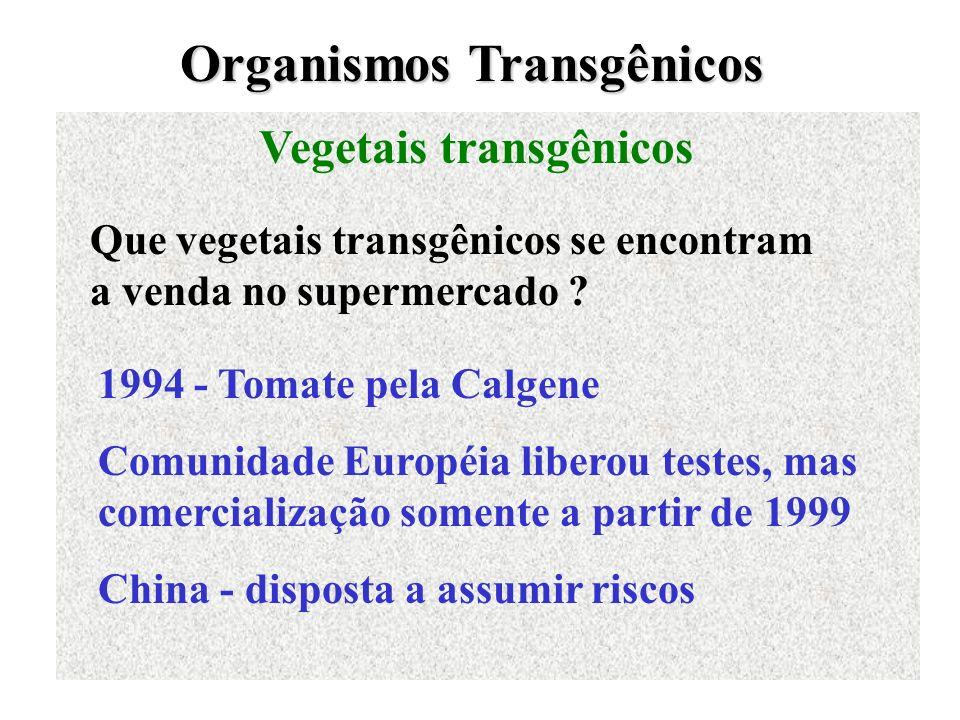 Organismos Transgênicos Vegetais transgênicos Que vegetais transgênicos se encontram a venda no supermercado ? 1994 - Tomate pela Calgene Comunidade E