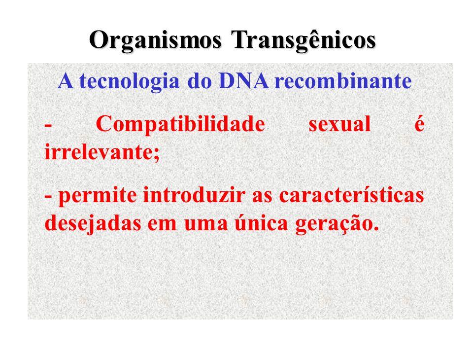 A tecnologia do DNA recombinante - Compatibilidade sexual é irrelevante; - permite introduzir as características desejadas em uma única geração. Organ