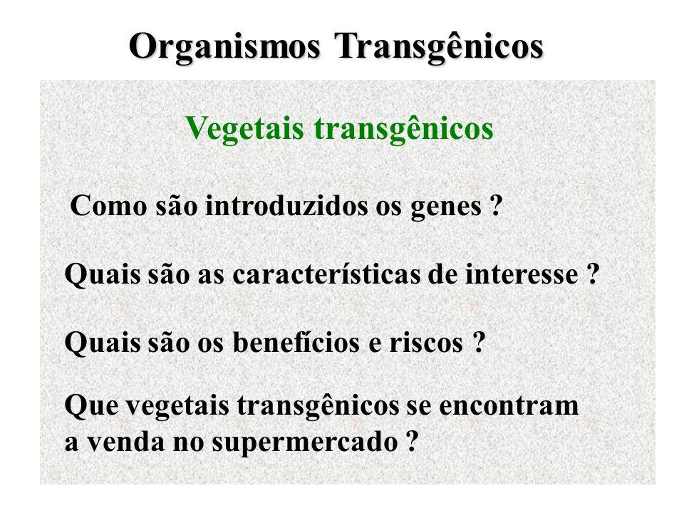 Organismos Transgênicos Vegetais transgênicos Como são introduzidos os genes ? Quais são as características de interesse ? Quais são os benefícios e r