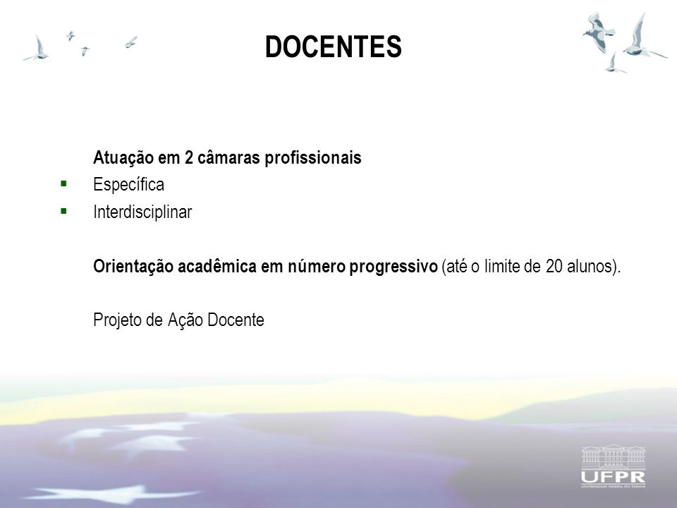 DOCENTES Atuação em 2 câmaras profissionais Específica Interdisciplinar Orientação acadêmica em número progressivo (até o limite de 20 alunos).