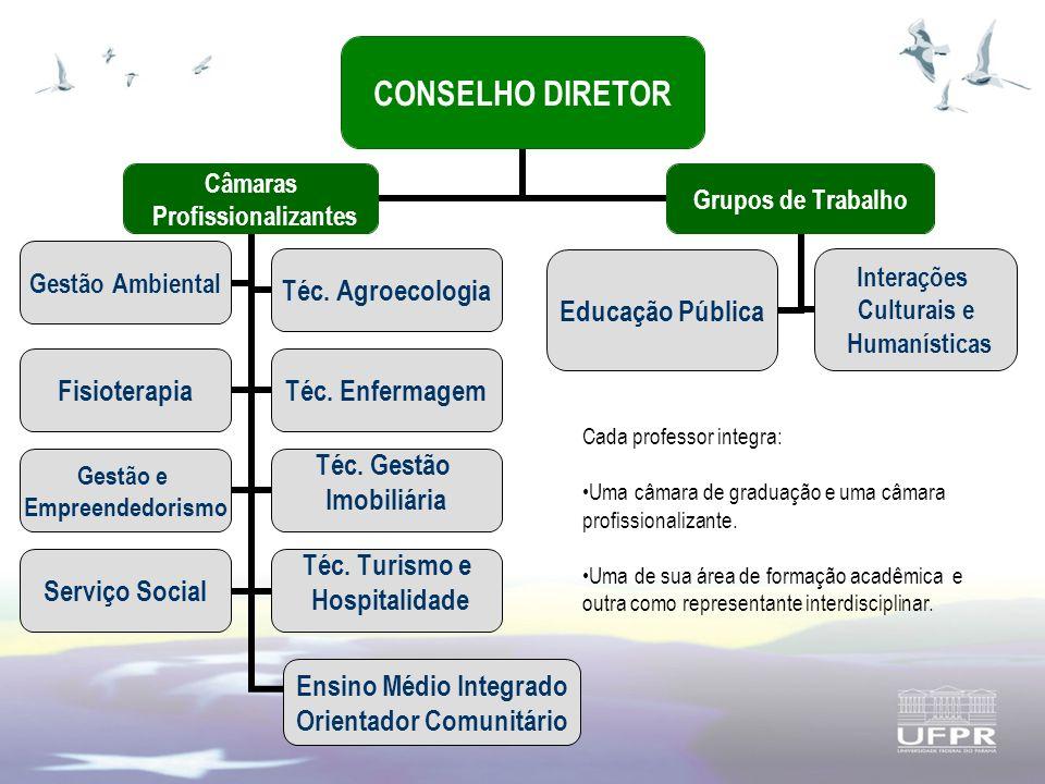 CONSELHO DIRETOR Câmaras Profissionalizantes Gestão AmbientalTéc.