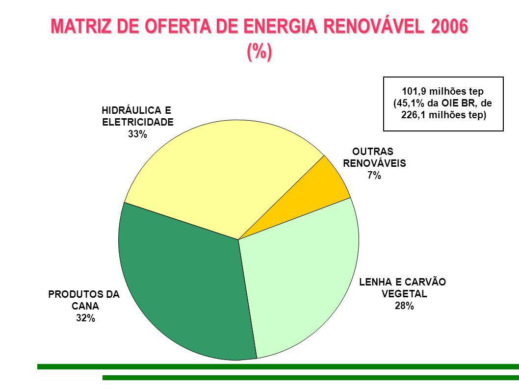 MATRIZ DE OFERTA DE ENERGIA RENOVÁVEL 2006 (%) (%) PRODUTOS DA CANA 32% HIDRÁULICA E ELETRICIDADE 33% LENHA E CARVÃO VEGETAL 28% OUTRAS RENOVÁVEIS 7%