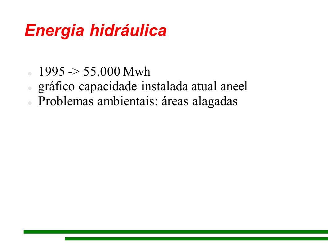 Energia hidráulica 1995 -> 55.000 Mwh gráfico capacidade instalada atual aneel Problemas ambientais: áreas alagadas