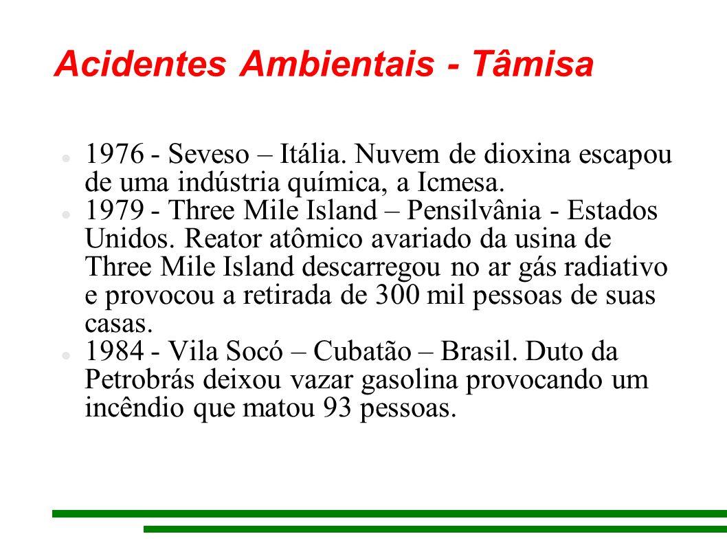 Acidentes Ambientais - Tâmisa 1976 - Seveso – Itália. Nuvem de dioxina escapou de uma indústria química, a Icmesa. 1979 - Three Mile Island – Pensilvâ