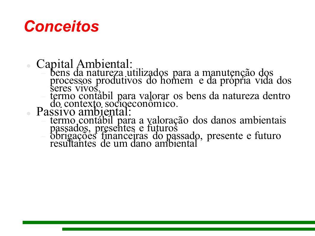 Conceitos Capital Ambiental: bens da natureza utilizados para a manutenção dos processos produtivos do homem e da própria vida dos seres vivos.