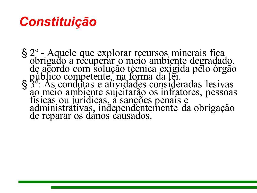 Constituição § 2º - Aquele que explorar recursos minerais fica obrigado a recuperar o meio ambiente degradado, de acordo com solução técnica exigida pelo órgão público competente, na forma da lei.