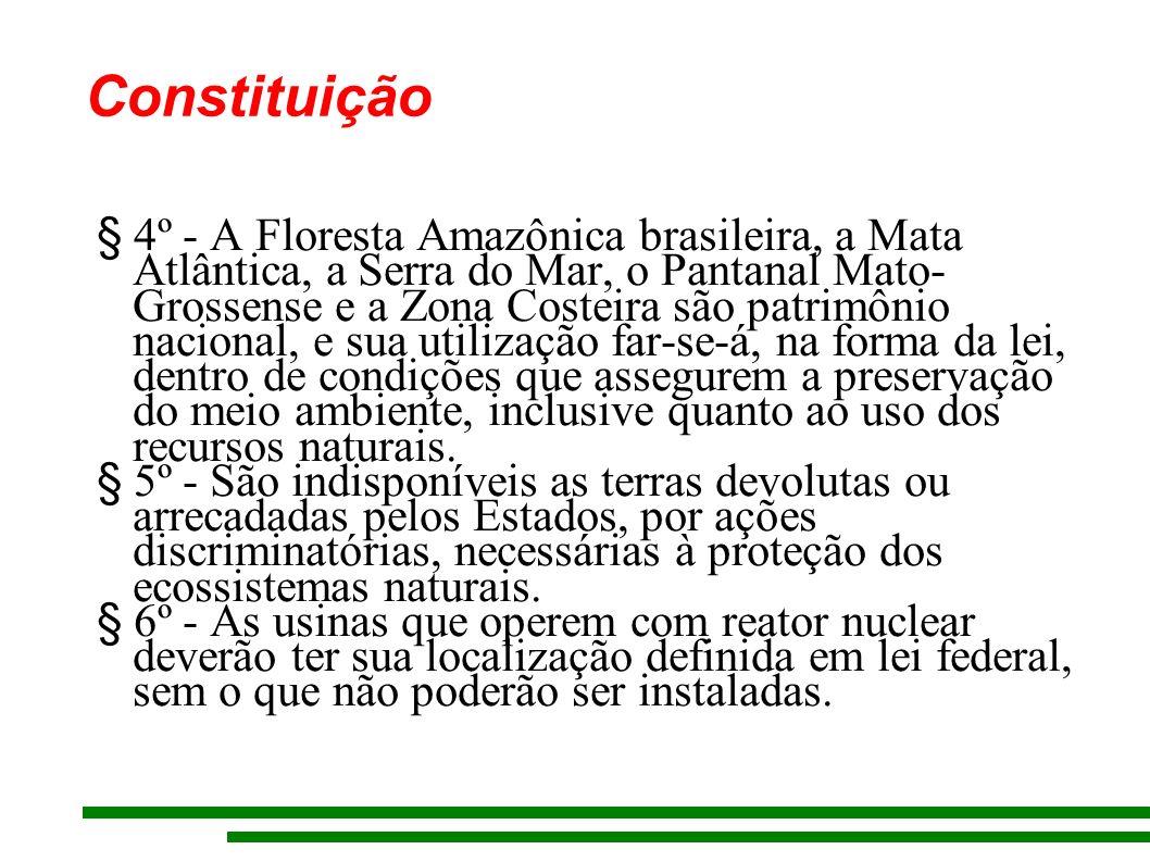 Constituição § 4º - A Floresta Amazônica brasileira, a Mata Atlântica, a Serra do Mar, o Pantanal Mato- Grossense e a Zona Costeira são patrimônio nacional, e sua utilização far-se-á, na forma da lei, dentro de condições que assegurem a preservação do meio ambiente, inclusive quanto ao uso dos recursos naturais.