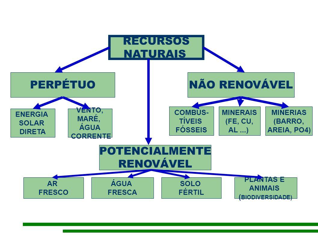 RECURSOS NATURAIS PERPÉTUONÃO RENOVÁVEL POTENCIALMENTE RENOVÁVEL ENERGIA SOLAR DIRETA VENTO, MARÉ, ÁGUA CORRENTE COMBUS- TÍVEIS FÓSSEIS MINERAIS (FE, CU, AL...) MINERIAS (BARRO, AREIA, PO4) AR FRESCO ÁGUA FRESCA SOLO FÉRTIL PLANTAS E ANIMAIS ( BIODIVERSIDADE)