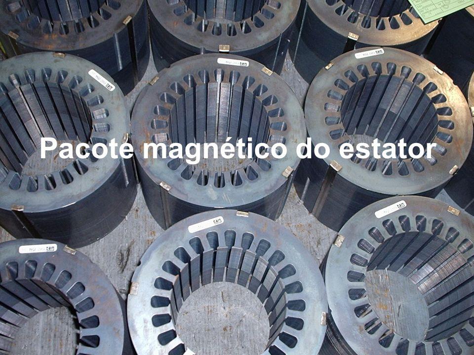 Pacote magnético do estator