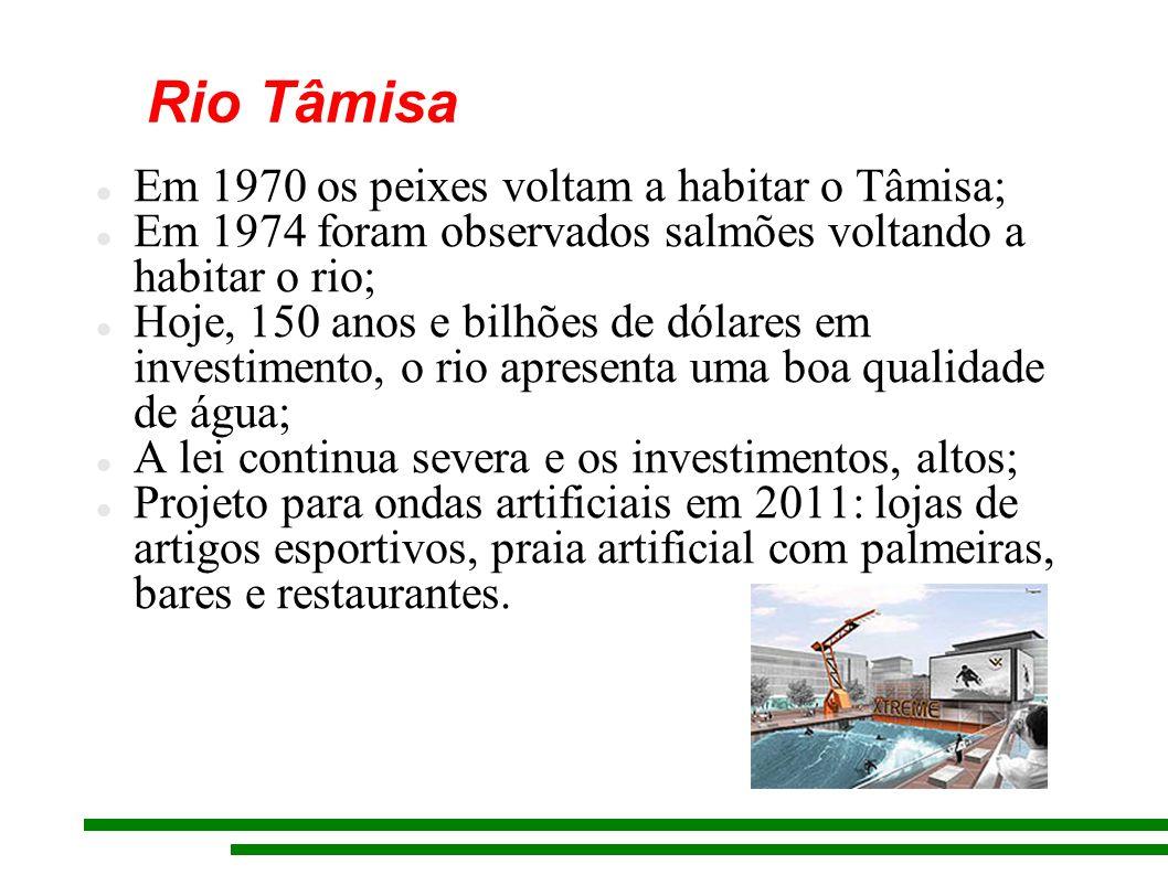 Rio Tâmisa Em 1970 os peixes voltam a habitar o Tâmisa; Em 1974 foram observados salmões voltando a habitar o rio; Hoje, 150 anos e bilhões de dólares