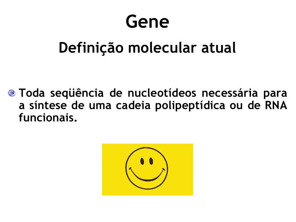 Toda seqüência de nucleotídeos necessária para a síntese de uma cadeia polipeptídica ou de RNA funcionais.