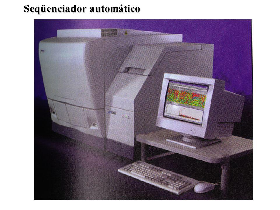 Seqüenciador automático