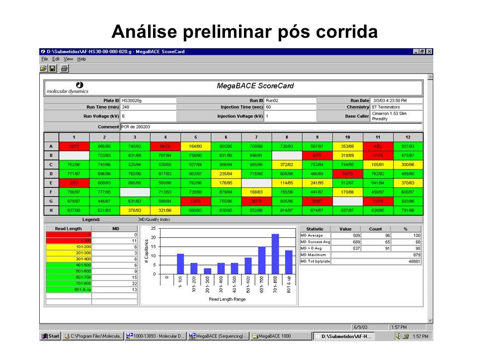 Análise preliminar pós corrida