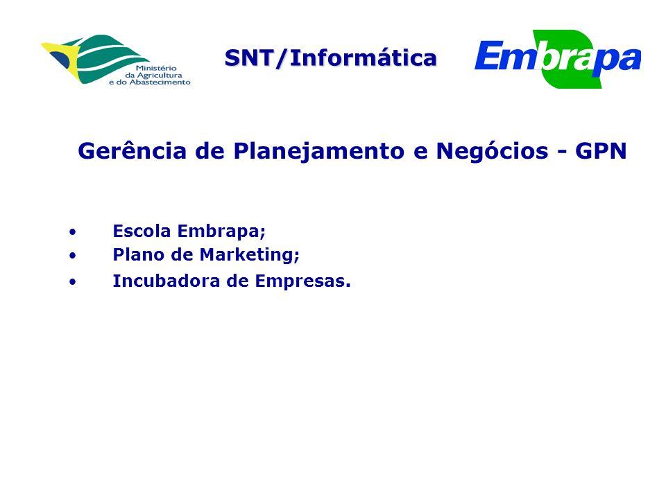 SNT/Informática Gerência de Planejamento e Negócios - GPN Escola Embrapa; Plano de Marketing; Incubadora de Empresas.