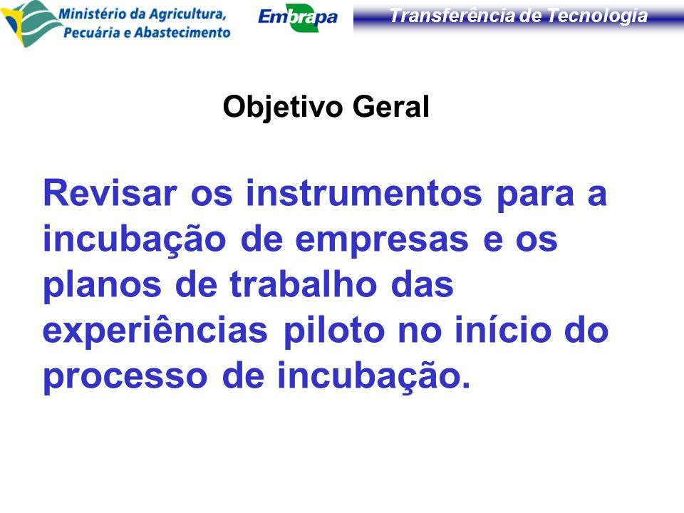 Transferência de Tecnologia Objetivo Geral Revisar os instrumentos para a incubação de empresas e os planos de trabalho das experiências piloto no iní