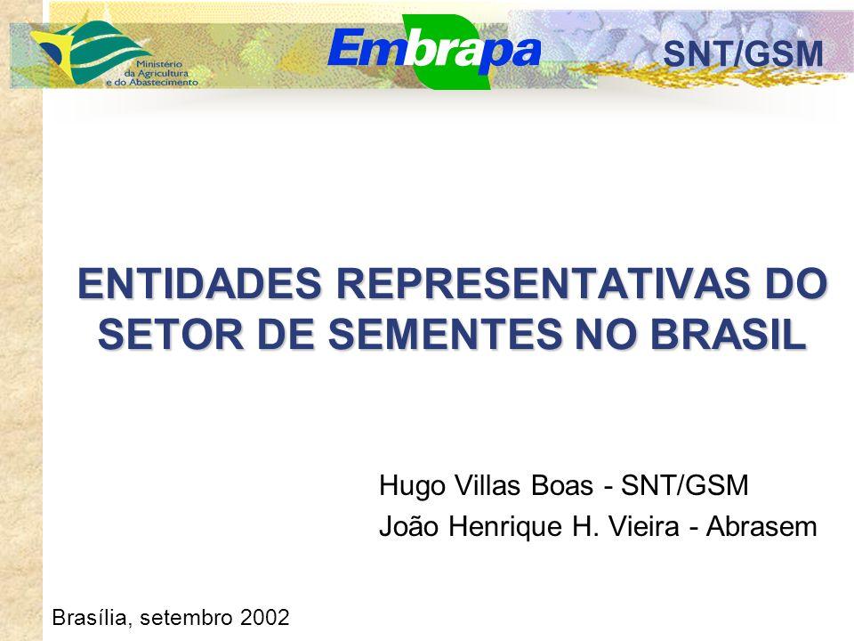 SNT/GSM ENTIDADES REPRESENTATIVAS DO SETOR DE SEMENTES NO BRASIL Hugo Villas Boas - SNT/GSM João Henrique H.