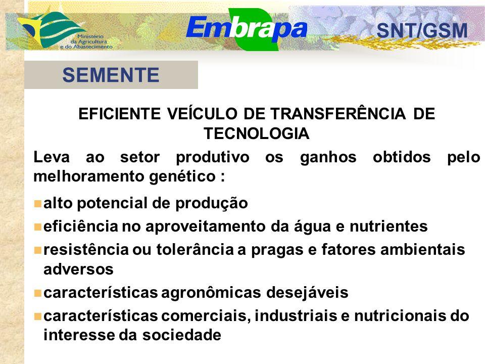 SNT/GSM GERMOPLASMA MELHORAMENTO GENÉTICO POPULAÇÕES SELEÇÃO/AVALIAÇÃO NOVA CULTIVAR produto a ser transferido pequeno estoque de sementes genéticas PROCESSO DE PESQUISA E DESENVOLVIMENTO DE NOVAS CULTIVARES