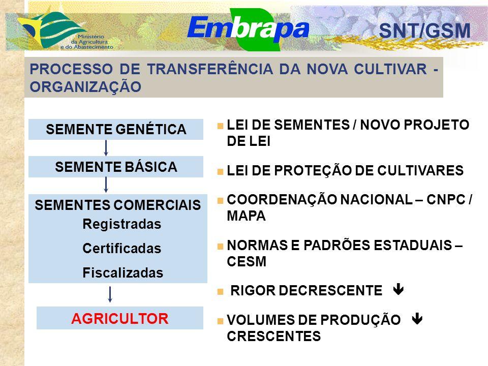SNT/GSM PROCESSO DE TRANSFERÊNCIA DA NOVA CULTIVAR - ORGANIZAÇÃO SEMENTES COMERCIAIS AGRICULTOR SEMENTE GENÉTICA SEMENTE BÁSICA Registradas Certificadas Fiscalizadas LEI DE SEMENTES / NOVO PROJETO DE LEI LEI DE PROTEÇÃO DE CULTIVARES COORDENAÇÃO NACIONAL – CNPC / MAPA NORMAS E PADRÕES ESTADUAIS – CESM RIGOR DECRESCENTE VOLUMES DE PRODUÇÃO CRESCENTES