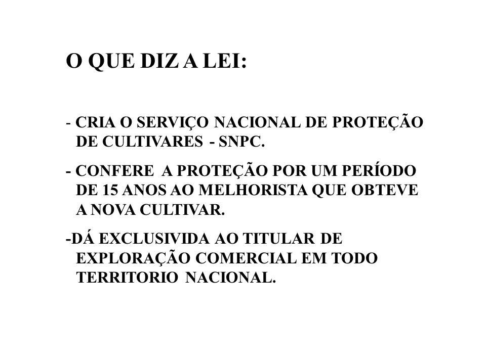 O QUE DIZ A LEI: - CRIA O SERVIÇO NACIONAL DE PROTEÇÃO DE CULTIVARES - SNPC.