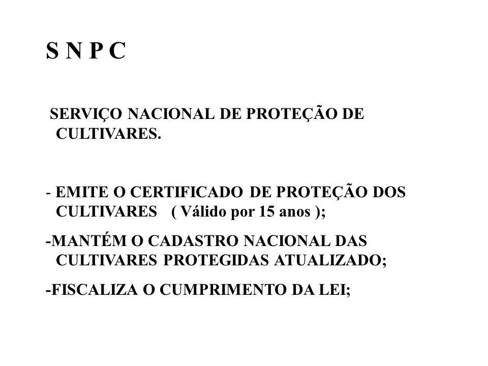 S N P C SERVIÇO NACIONAL DE PROTEÇÃO DE CULTIVARES.