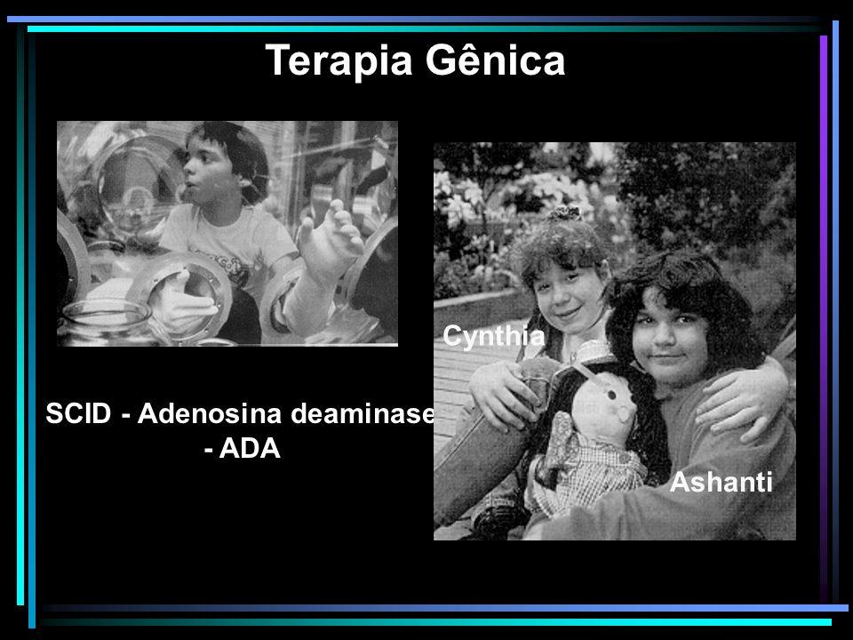 SCID - Adenosina deaminase - ADA Terapia Gênica Cynthia Ashanti