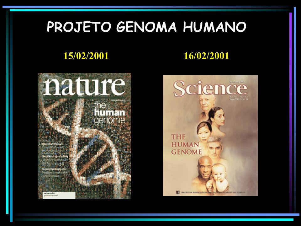 15/02/200116/02/2001 PROJETO GENOMA HUMANO