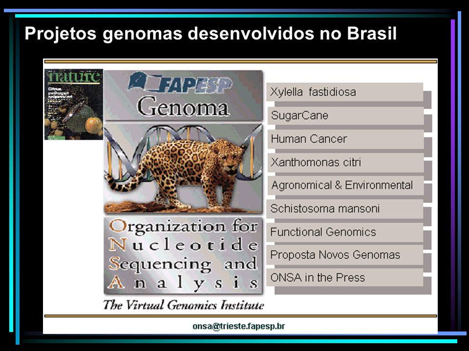 Projetos genomas desenvolvidos no Brasil