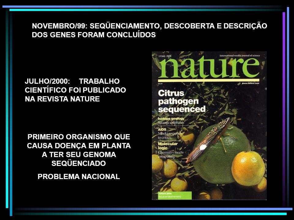 NOVEMBRO/99: SEQÜENCIAMENTO, DESCOBERTA E DESCRIÇÃO DOS GENES FORAM CONCLUÍDOS JULHO/2000: TRABALHO CIENTÍFICO FOI PUBLICADO NA REVISTA NATURE PRIMEIR