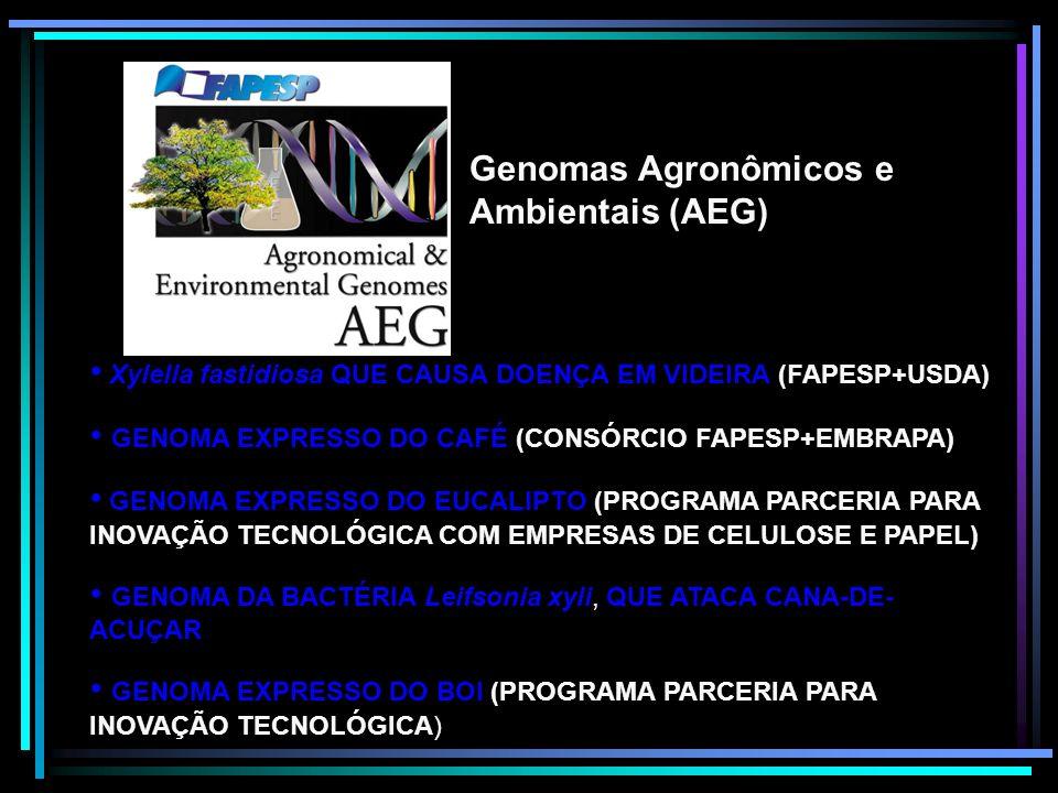 Genomas Agronômicos e Ambientais (AEG) Xylella fastidiosa QUE CAUSA DOENÇA EM VIDEIRA (FAPESP+USDA) GENOMA EXPRESSO DO CAFÉ (CONSÓRCIO FAPESP+EMBRAPA)