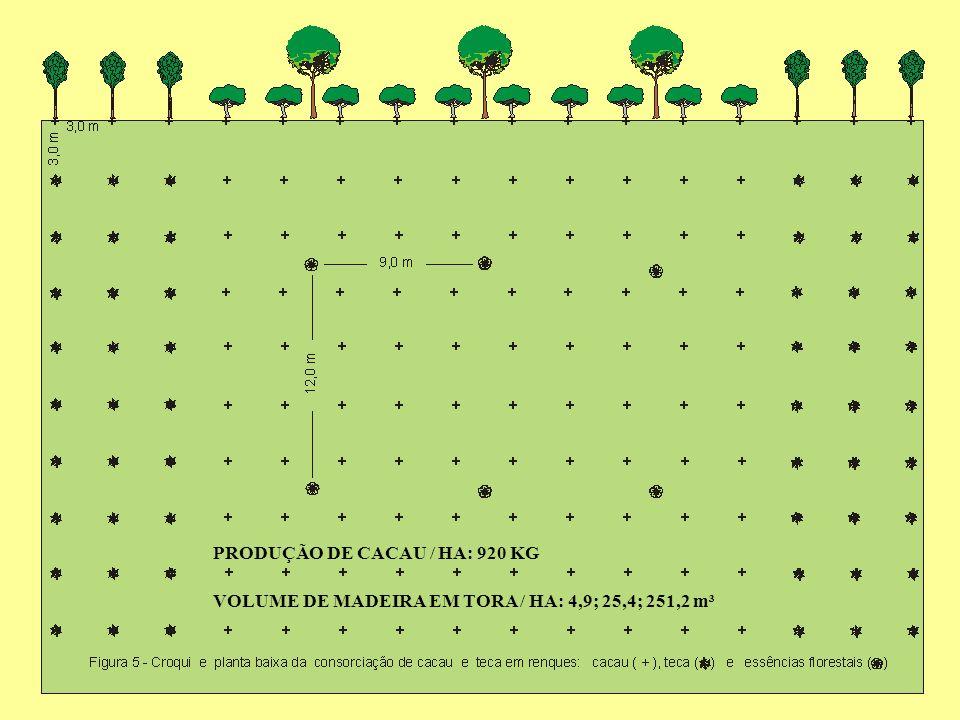 VOLUME DE MADEIRA EM TORA / HA: 4,9; 25,4; 251,2 m³ PRODUÇÃO DE CACAU / HA: 920 KG