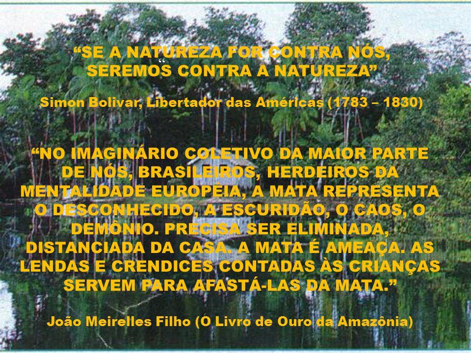 NO IMAGINÁRIO COLETIVO DA MAIOR PARTE DE NÓS, BRASILEIROS, HERDEIROS DA MENTALIDADE EUROPÉIA, A MATA REPRESENTA O DESCONHECIDO, A ESCURIDÃO, O CAOS, O